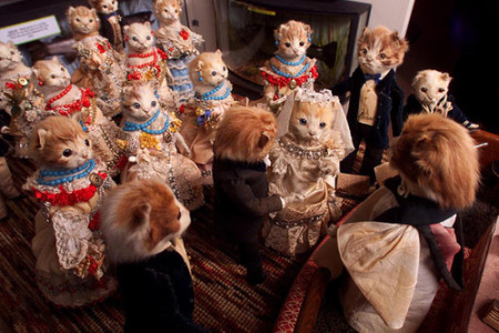 walter-potter-kitten-wedding