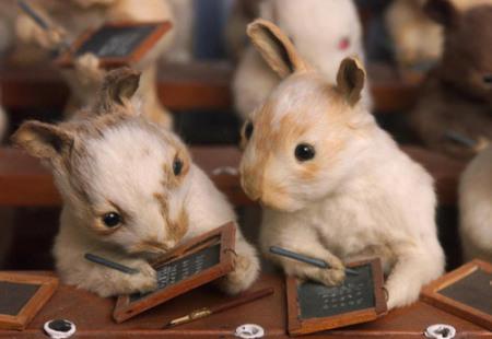 walter-potter-the-rabbit-village-school-house-detail